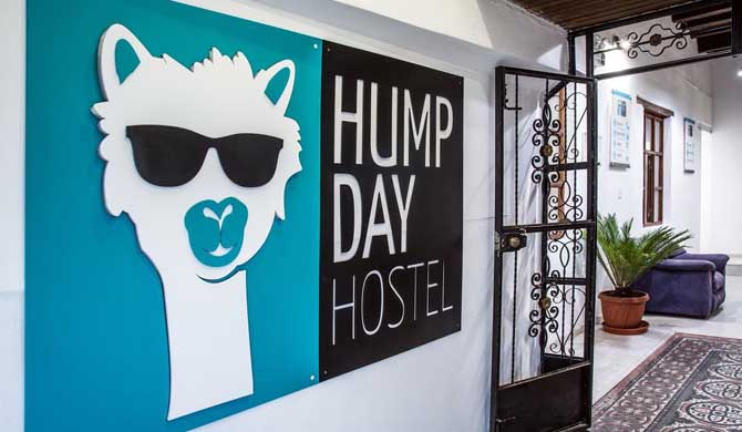 Hump-Day-Hostel